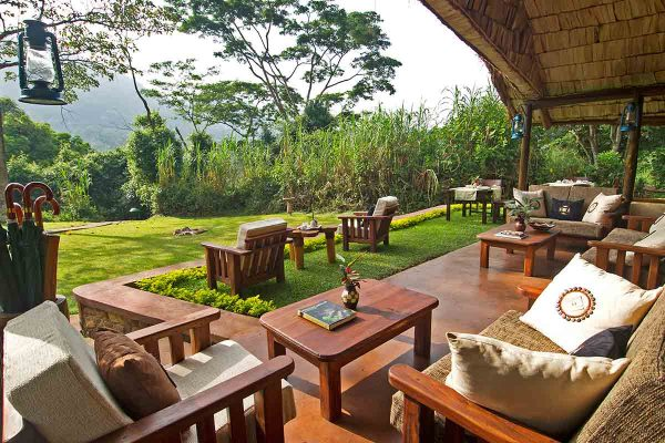 gorilla forest lodge